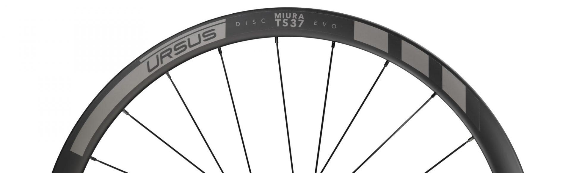TS37 EVO Disc